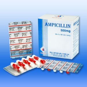 cephalexin 250 mg price
